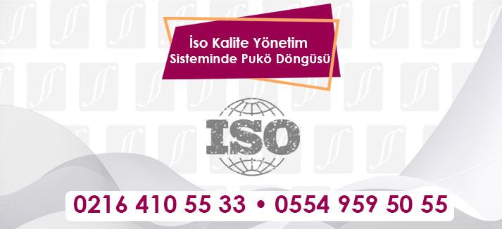iso-Kalite_Yonetim-Sisteminde-Puko-Dongusu-